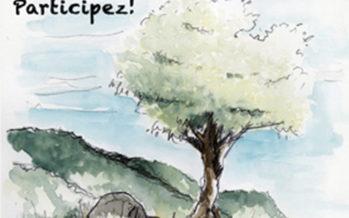 Vous connaissez un «arbre remarquable»? Signalez (et protégez) le !