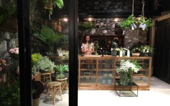 [St-Denis] Un nouveau bar… à plantes !