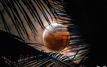 Éclipse lunaire: La magie et beauté de ce phénomène rare
