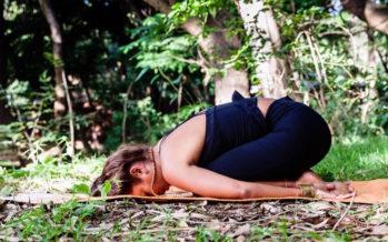 «Jardiner ses passions» : 5 jours pour se reconnecter à soi-même et à la nature