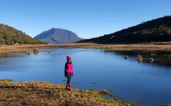 Idée sortie : À la découverte du lac du Piton Argamasse avec Chloé