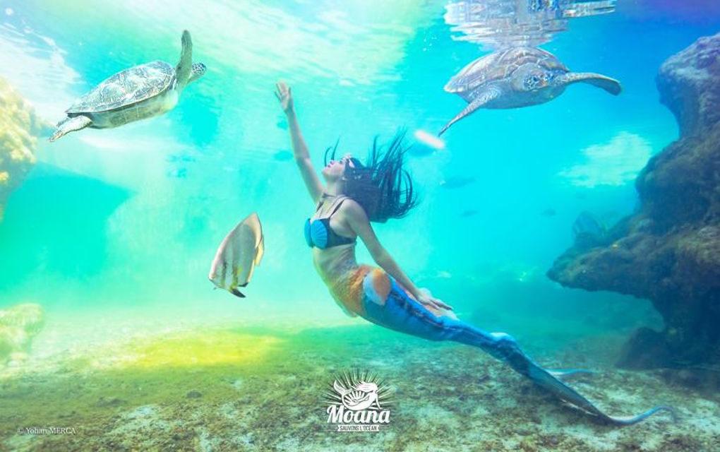 Sirène professionnelle, elle sensibilise petits et grands à la protection des océans