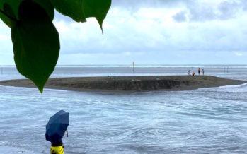 Surprise de la nature : un îlot éphémère s'est formé à l'Etang-Salé