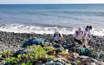World cleanup day : déjà plus de 40 actions programmées sur l'île