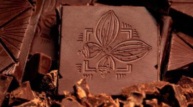 Bientôt du chocolat 100% péi pour vos papilles